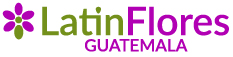 Flores y Regalos a Guatemala